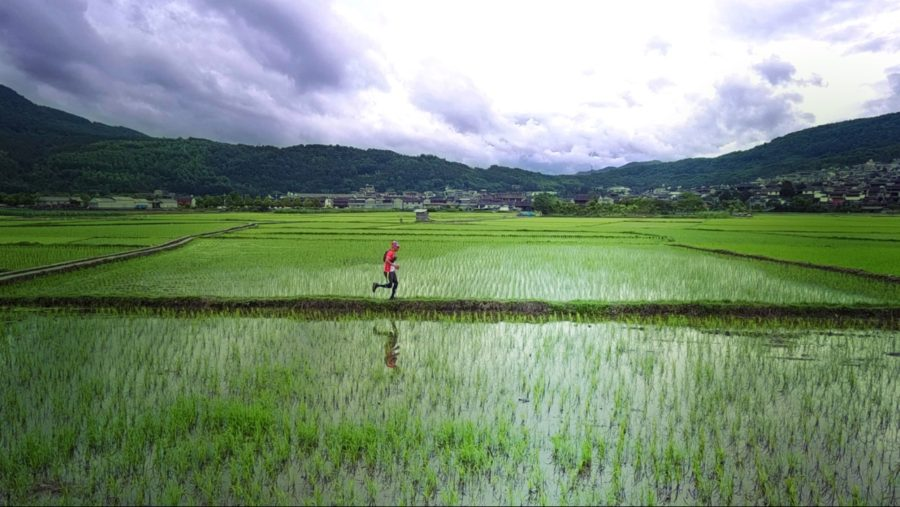 This is China, so, yes, you will occasionally run through rice paddies.